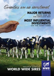 Holstein Bull Catalogue